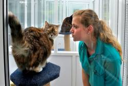 Boarding Cattery Staff/Owners